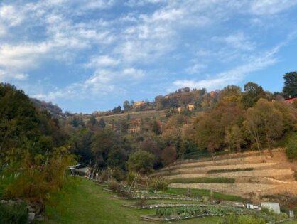 La Valle di Astino